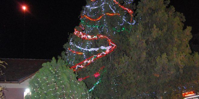 Коледните светлини грейнаха и в плевенско училище