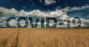 """Държавен фонд """"Земеделие"""" ще подпомага засегнати от пандемията стопани"""