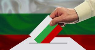 """Висока избирателна активност сочи проучване на агенция """"Медиана"""""""