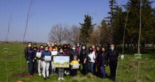Близо 2 хиляди фиданки ще бъдат посадени в седмицата на гората в община Левски