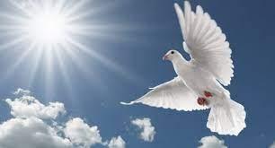 днес отбелязваме свети дух