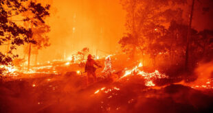 отново пожари по невнимание и небрежност в плевенска област