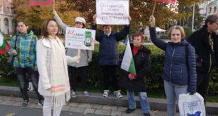30-тина плевенчани протестираха срещу зелените сертификати